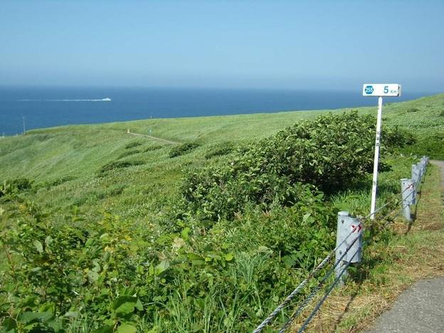 写真: 8_11焼尻島西の端の海岸01