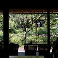 Photos: 白蓮舎にて・・