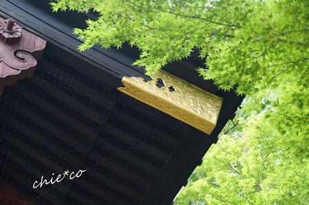 鎌倉-382
