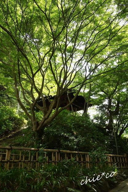 鎌倉-405