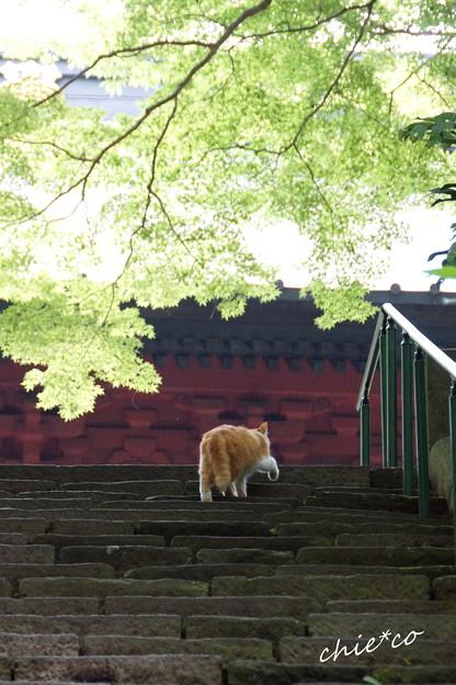 鎌倉-412