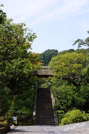 東慶寺-126