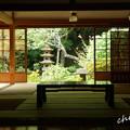 Photos: 浄智寺-206