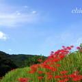 Photos: 日向薬師-364