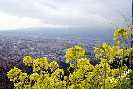 あぐりパークの丘より・・松田山 14