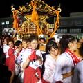 本庄祇園祭大人神輿