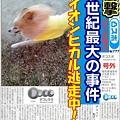 Photos: decojiro-20111228-173319