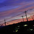 Photos: DSC_7542