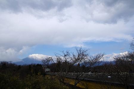 初富士山撮り