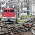 Photos: EF65 1118単機で宇都宮発車