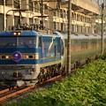 Photos: EF510-515牽引寝台特急カシオペア号夕陽の宇都宮貨物(タ)でお見送り♪
