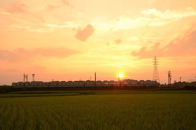 沈む夕陽と東武宇都宮線
