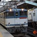Photos: EF65 2086牽引高速貨物3071レ赤羽6番通過