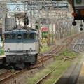 Photos: ひとり旅 EF65