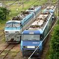 新鶴見機関区で休む機関車たち