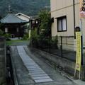 Photos: 参道?