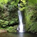 150629-55海沢園地へ滝を求めて・大滝