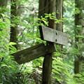 150629-62海沢園地へ滝を求めて・フレネノ滝へ