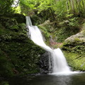 150629-69海沢園地へ滝を求めて・三ツ釜ノ滝