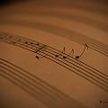 Score_2009811600018