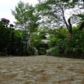 写真: 本土寺@松戸DSC00236