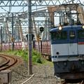 Photos: 5087レ【EF65 2088牽引】