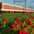 Photos: 夕方の近鉄大阪線