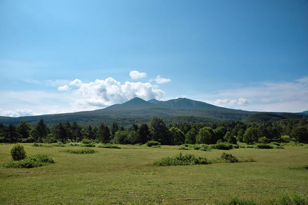 萱野茶屋付近から眺める八甲田山