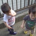 Photos: 健ちゃん康ちゃん