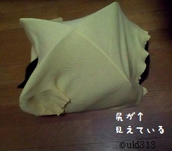 09_04猫テント3