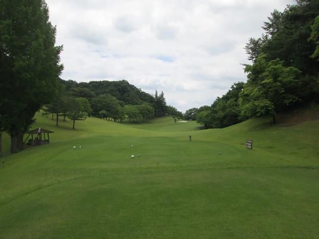 足利城ゴルフ倶楽部12番ホールコース画像2015.6.20