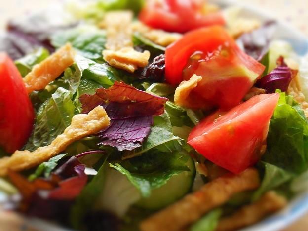 毎日の野菜サラダ~健康生活実践講座~