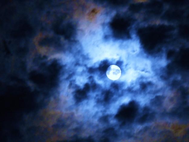 瀬戸の名月~十五夜のお月さま~