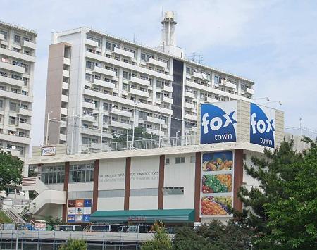 フォックスタウン保見店(仮称) 6月28日(水)オープン-180616-1