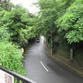 Photos: 成就院(鎌倉市)
