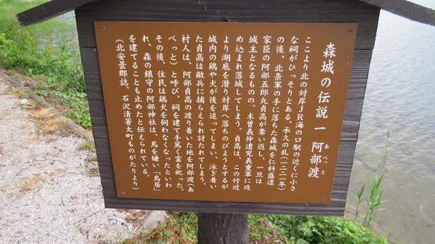 仁科神社・阿部神社(仁科城・森城。大町市)