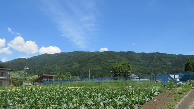 計見城(木島平村)