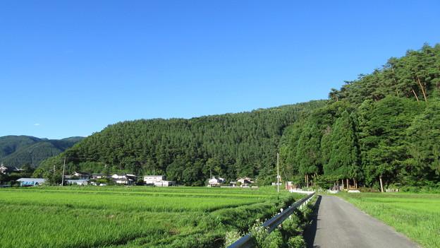 林小城(福山城。松本市)