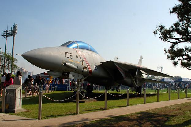 F-14 VFA-102 DIAMONDBACKS