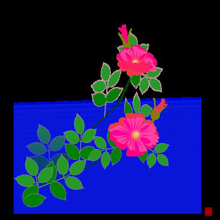 ハマナスの画像 p1_23