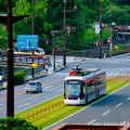 写真: 市役所・区役所前の電車通り。