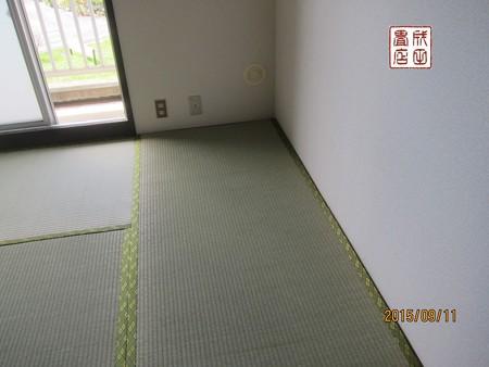 清地204号室04
