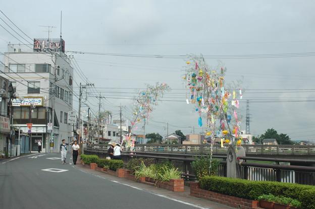 Photos: 七夕6
