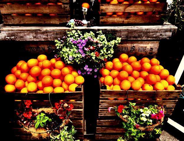 ~オレンジの修学旅行~♪