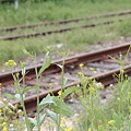 RailWay~♪