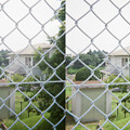 Photos: 柵の向こう側