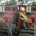 Photos: 中村稲荷