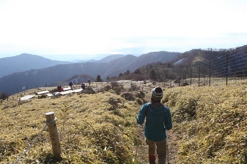 IMG_5770塔ノ岳・丹沢山登山