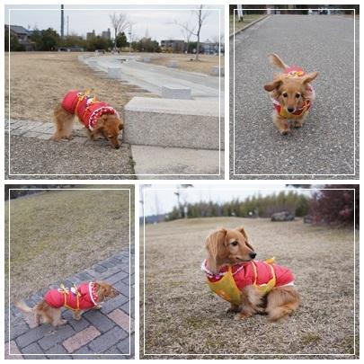 20120205 お散歩