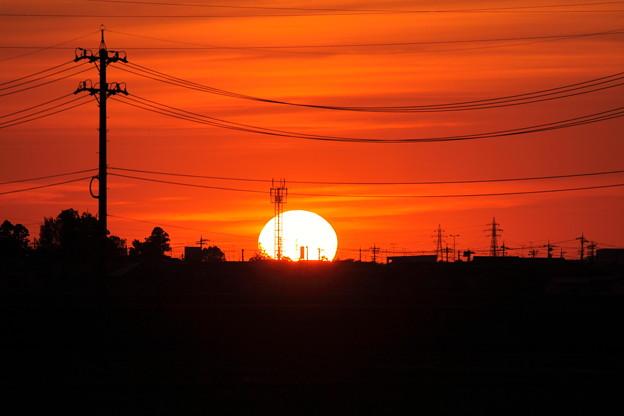 Photos: 帰り道の夕陽